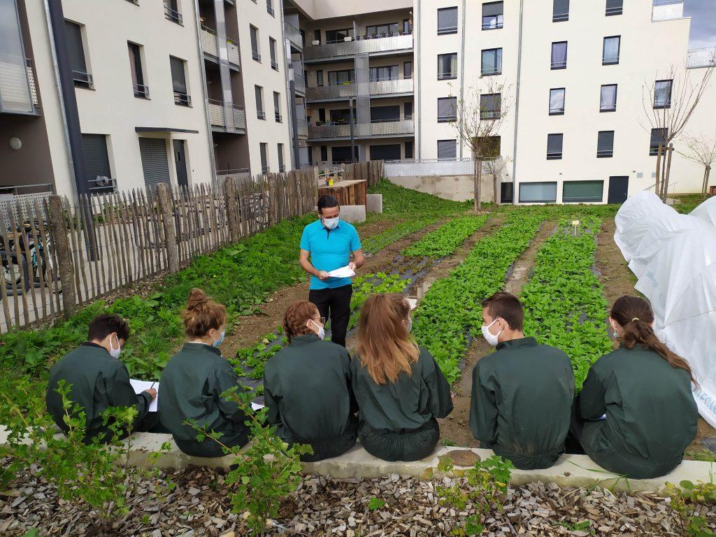 La ferme urbaine des jardins perchés