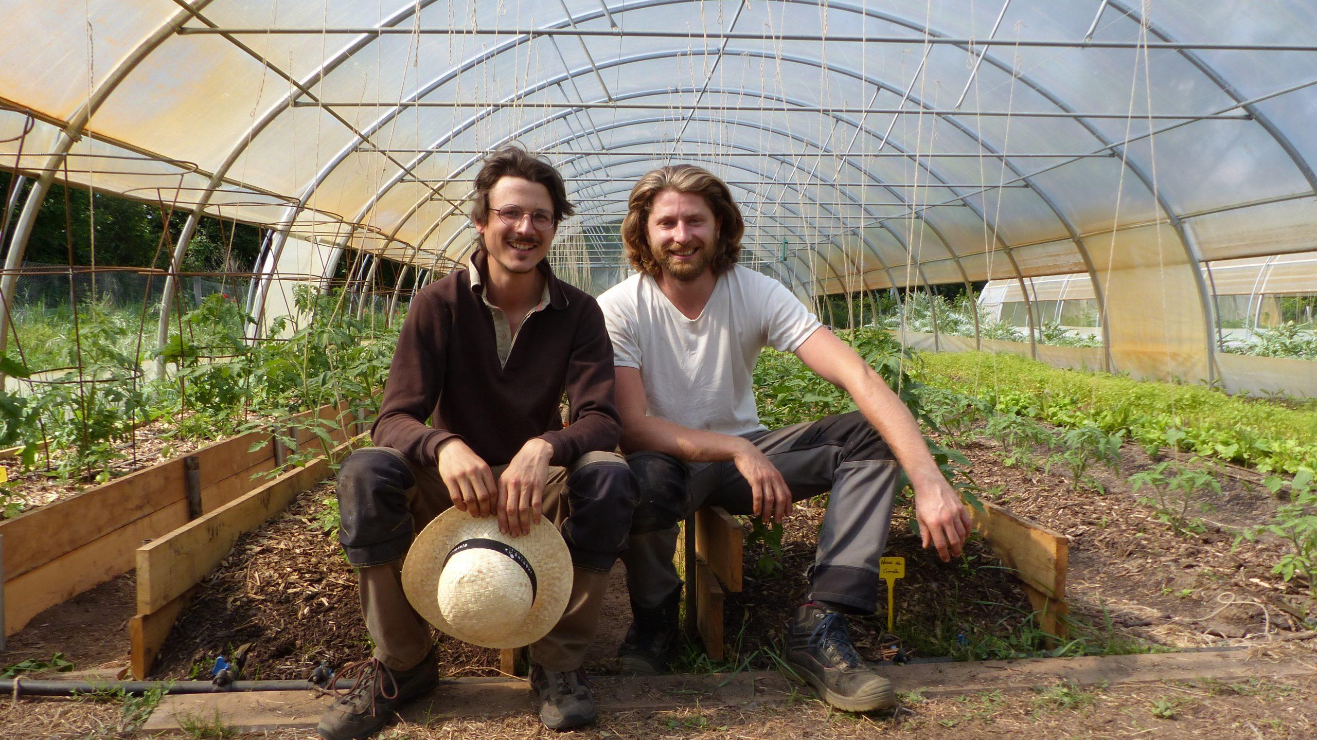 Le Potager de Loire, une ferme 100% biologique et agroécologique à La Riche qui se diversifie