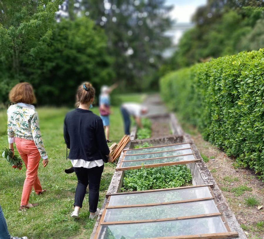 Un jardin pour cultiver la solidarité !